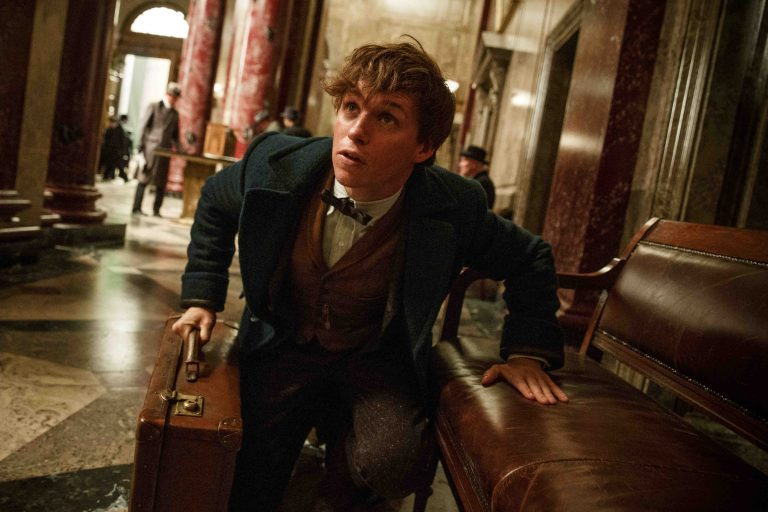 Fantastic Beasts and Where to Find Them sequel to explore different direction!