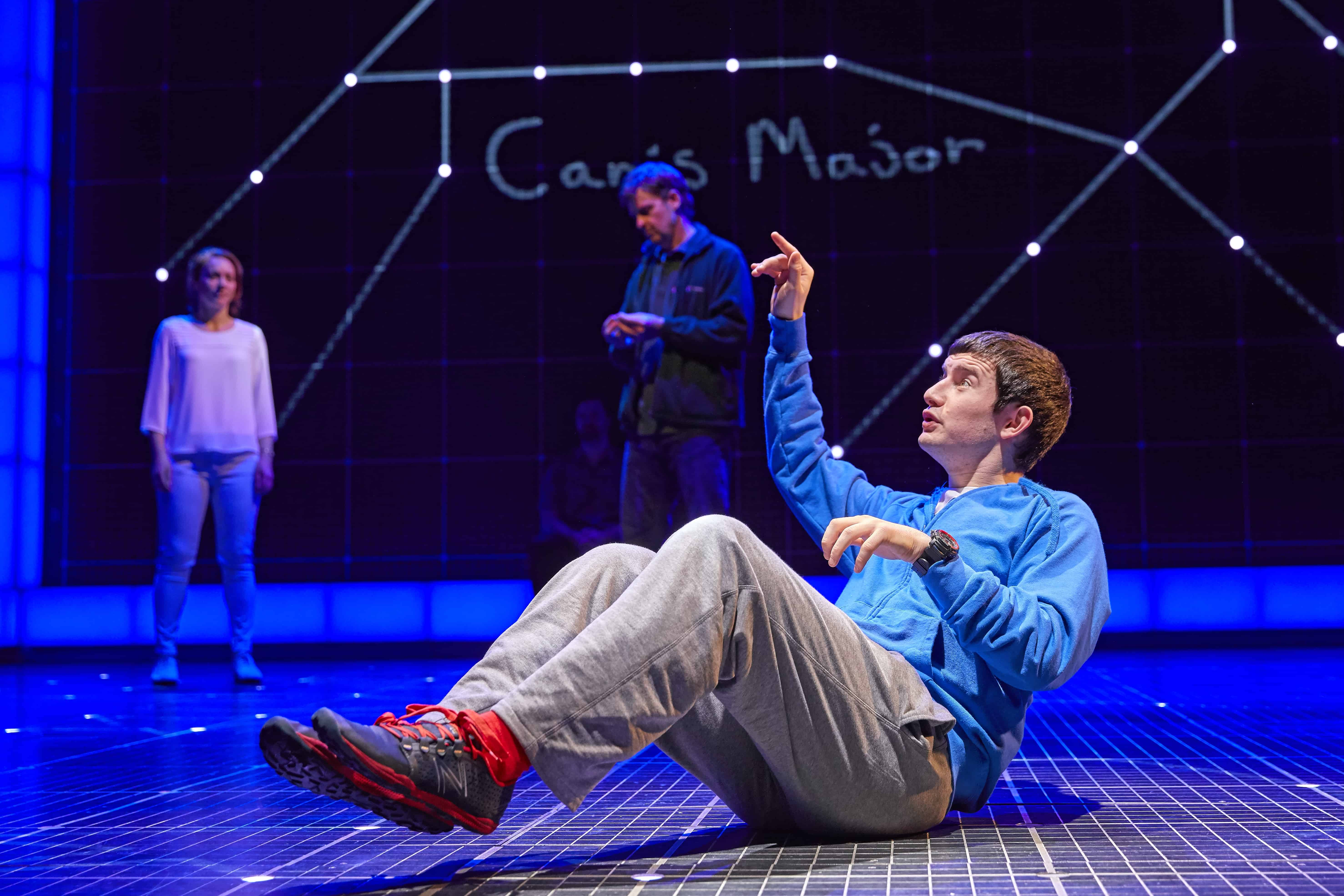 The Curious Incident of the Dog in the Night-Time Essay